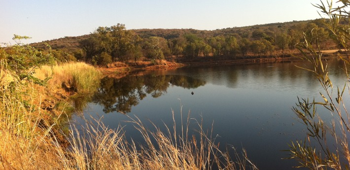 Bushveld with lake